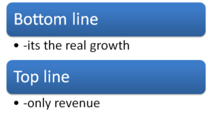 Bottom and top line growth